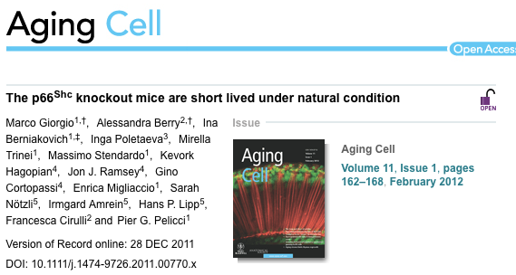 Aging_Cell