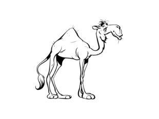 A camel is a horse made by a committee